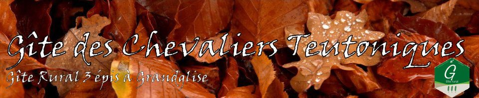 cropped-header_feuilles4.jpg